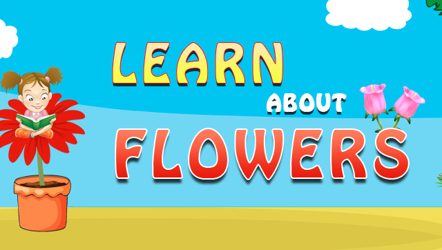 Learn About Flowers
